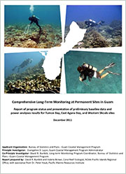 Comprehensive long-term coral reef monitoring at permanent sites on Guam. Report of program status and presentation of preliminary baseline data and power analyses results for Tumon Bay, East Agana Bay, and Western Shoals sites