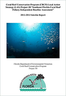 Coral Reef Conservation Program (CRCP) Local Action Strategy (LAS) Project 3B 'Southeast Florida Coral Reef Fishery-Independent Baseline Assessment' : 2012-2013 interim report / prepared by Kirk Kilfoyle, Brian K. Walker, Steven G. Smith, and Richard Spieler.