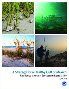 Cover - A Strategy for a Healthy Gulf of Mexico: Resilience Through Ecosystem Restoration