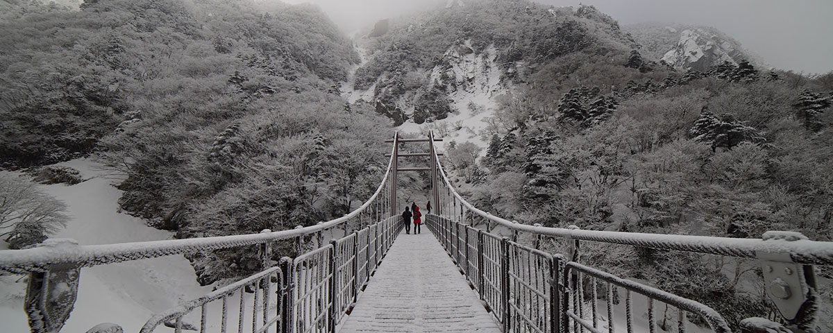 Photo of people crossing a snowy bridge