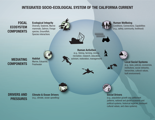 Integrated Socio-ecological System of the California Current