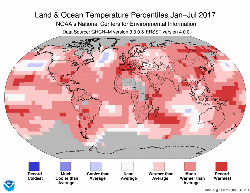 Map of global temperature percentiles for January to July 2017