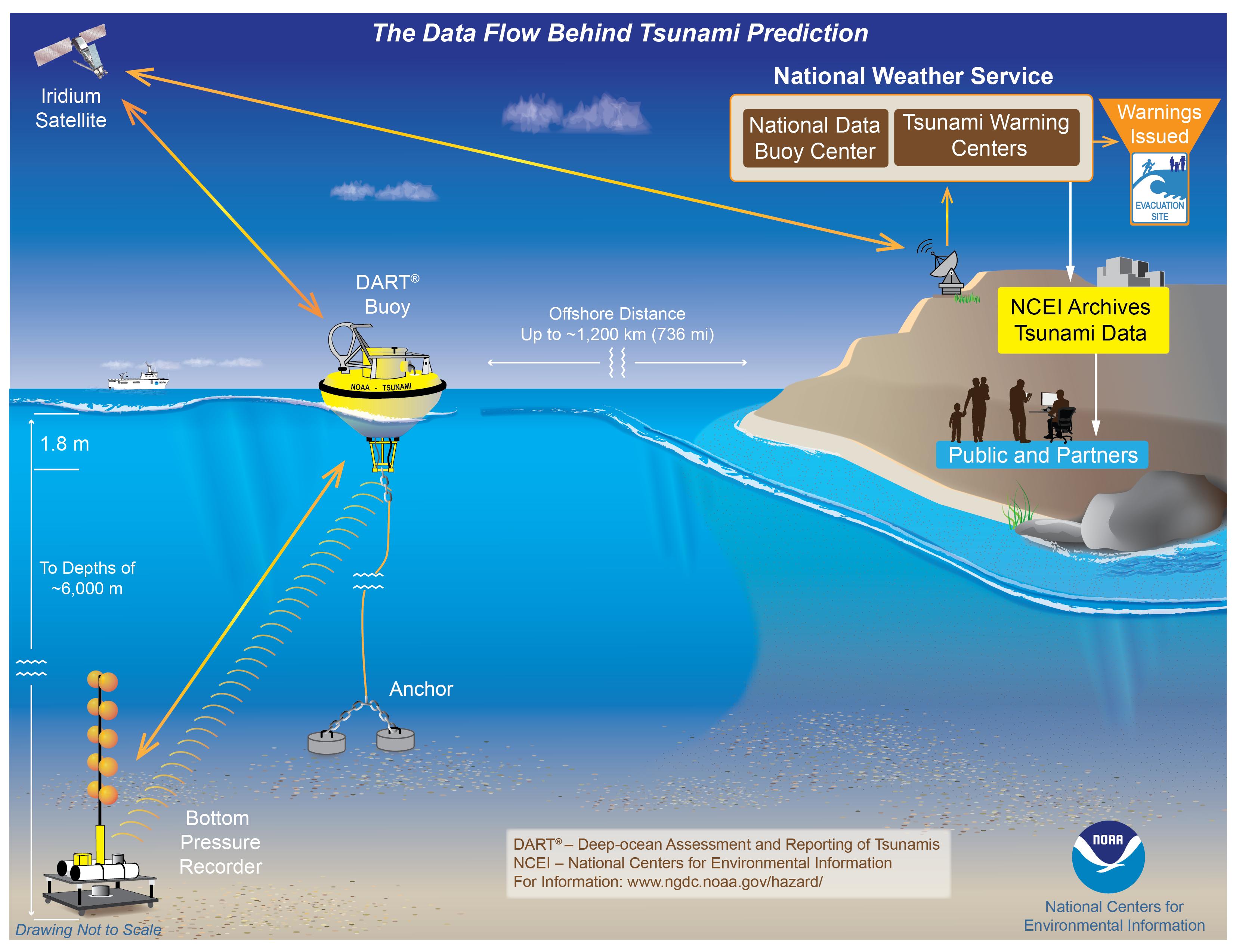 Image of DART buoy data flow for tsunami preparedness NCEI