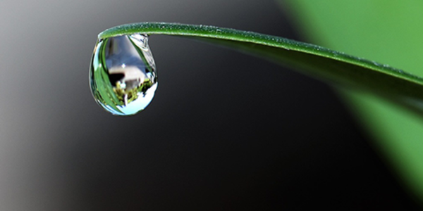 Close-up picture of a drop of water