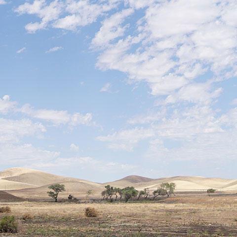 Photo of the California desert