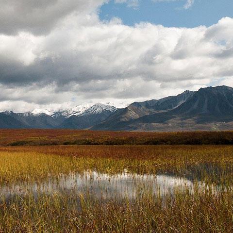Photo of Denali National Park and Preserve in Alaska