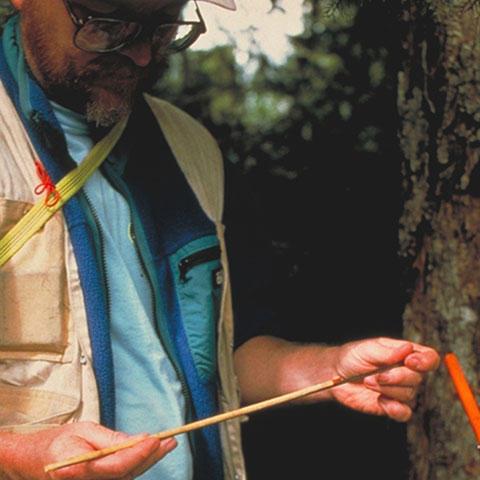 Paleoclimatologist taking a core sample