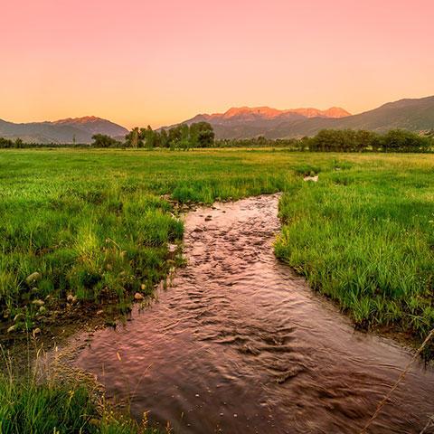 Photo of a creek landscape in Utah