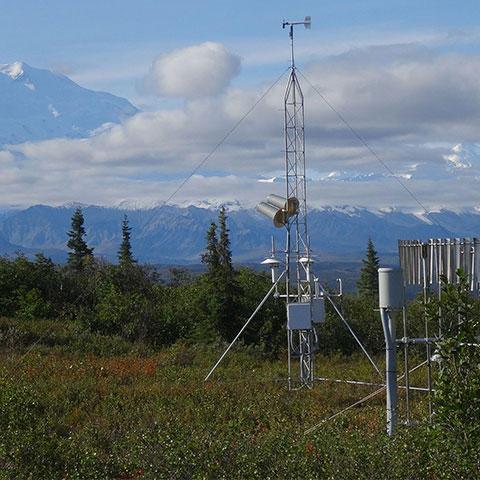 Photo of U.S. Climate Reference Network Station in Denali, Alaska