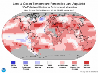 Map of global temperature percentiles for January to August 2018
