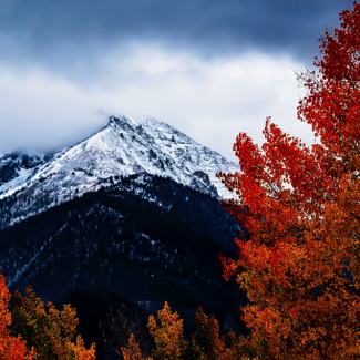 Photo of mountains in Colorado in the fall