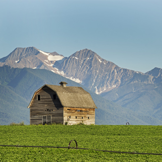 Barn on farm in Montana with snow covered mountains in the background.