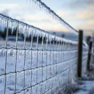 Picture of a frozen fence