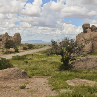 Photo of Rockhound Park in New Mexico