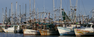 Image of shrimp boats docked in Gulf of Mexico, by B. Ambrose for NOAA NCEI.
