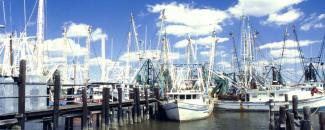 Picture of Mississippi shrimp boats in Gulf of Mexico