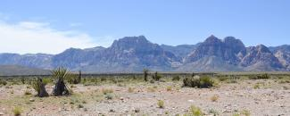 Photo of Nevada Red Rock Canyon Desert