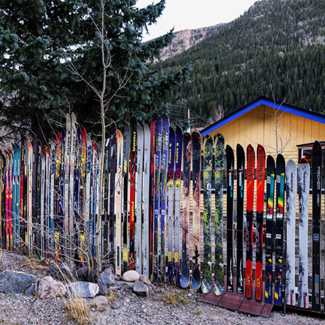 Photo of skis lined up vertically outside near a shed