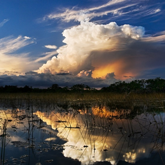 Photo of storm clouds over the Everglades in Florida