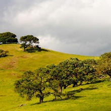 Photo of California hills