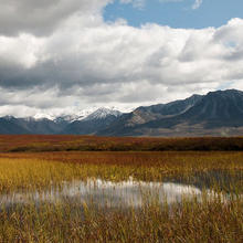 Photo of Denali National Park and Preserve in Alaska