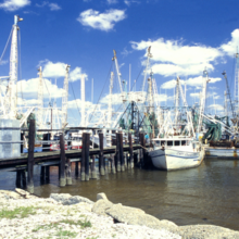 Picture of Mississippi shrimp boats in Gulf, courtesy of NOAA
