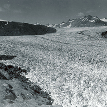Photo of Muir Glacier in 1941