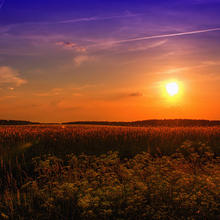 Photo of a summer sunset over a field