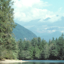 Image of Skagit River, Washington, by NOAA NFSM