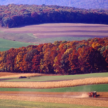 Picture-of-autumn-landscape-in-Pennsylvania-by-Pixabay
