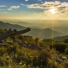 Photo of Shenandoah National Park in Virginia