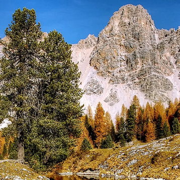 Photo of the Alpine Mountains