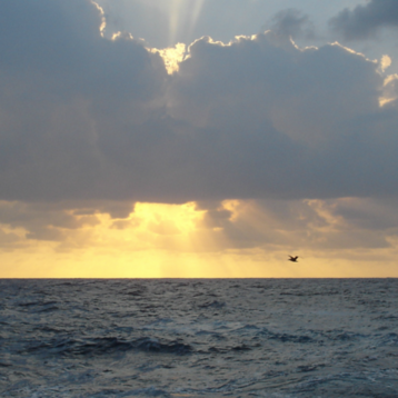 Photo of ocean, clouds, sun, from NOAA Photo Library.