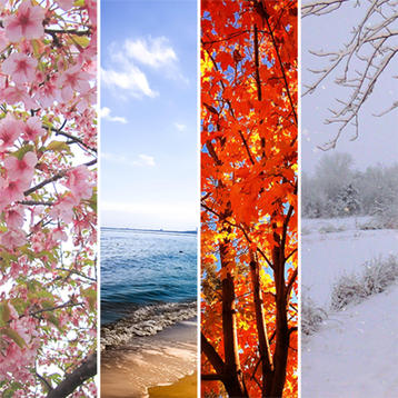 Images reprenting spring, summer, fall, and winter