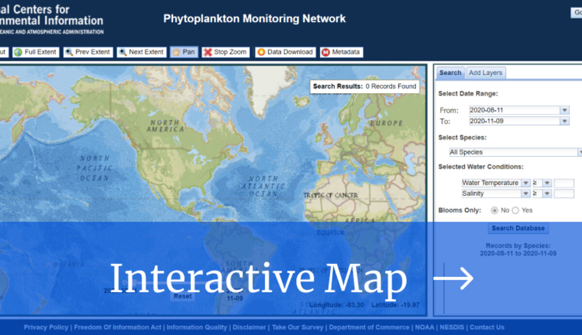 Link to Interactive Map, Phytoplankton Viewer