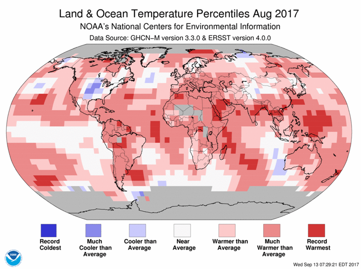 Map of global temperature percentiles for August 2017