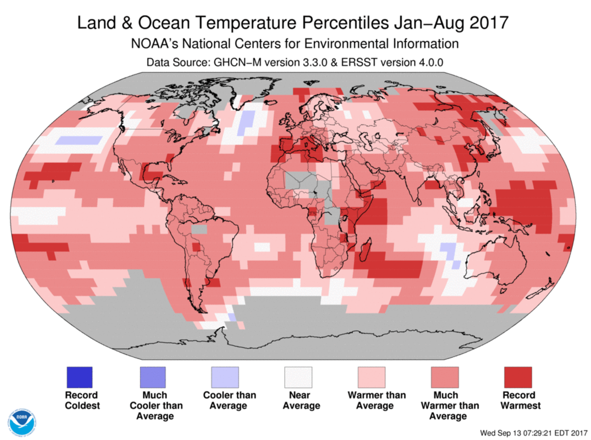Map of global temperature percentiles for January to August 2017