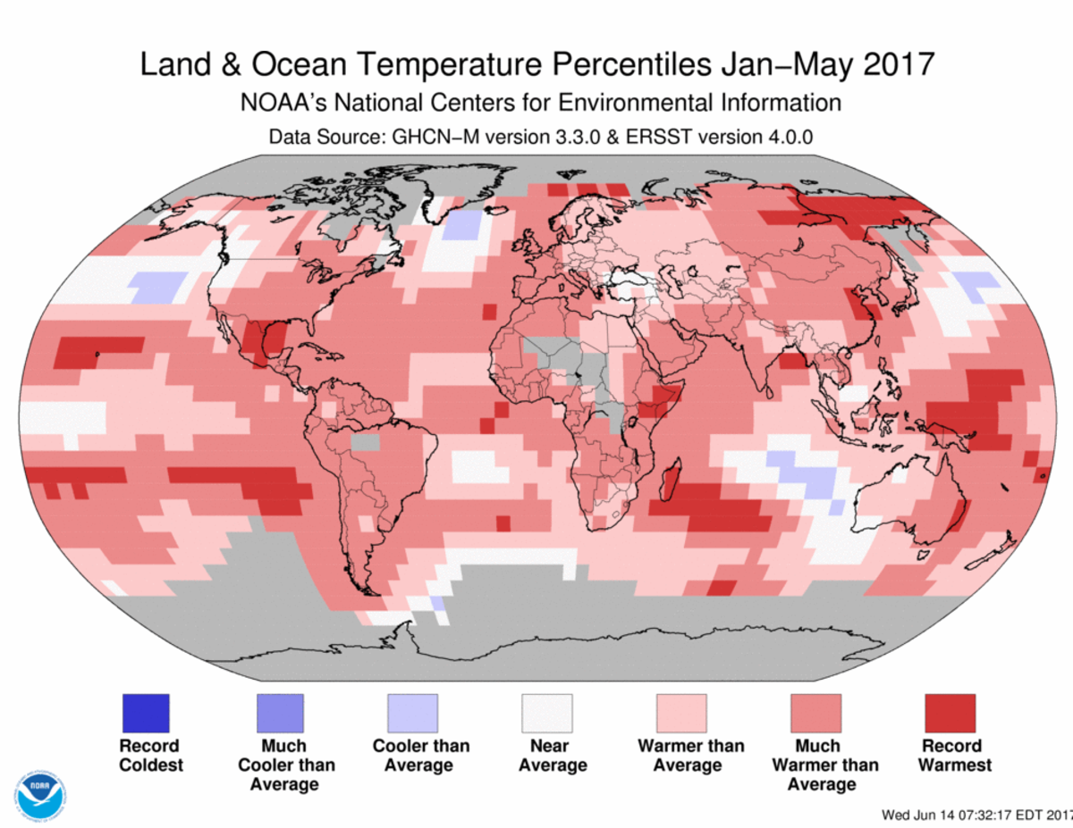 Map of global temperature percentiles for January to May 2017