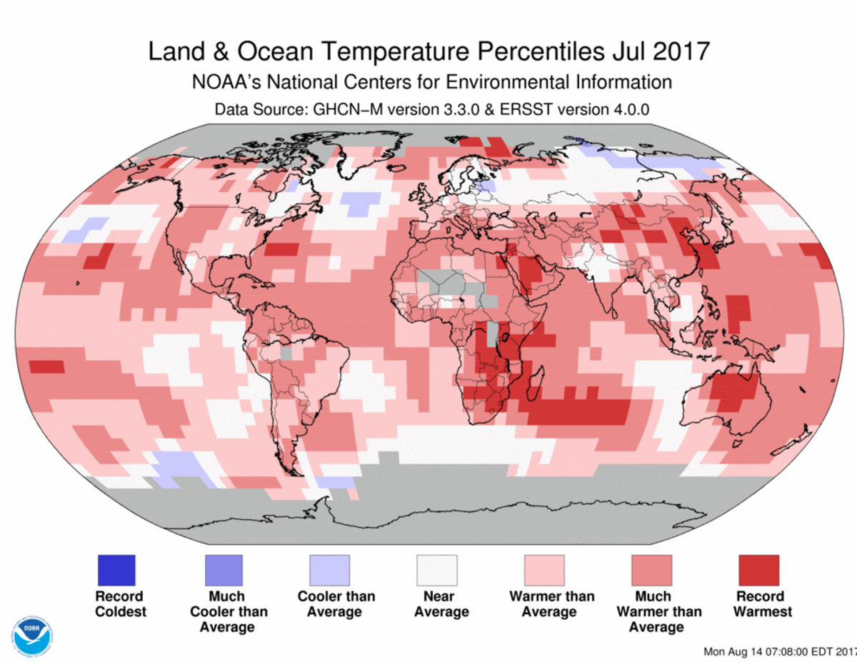 Map of global temperature percentiles for July 2017