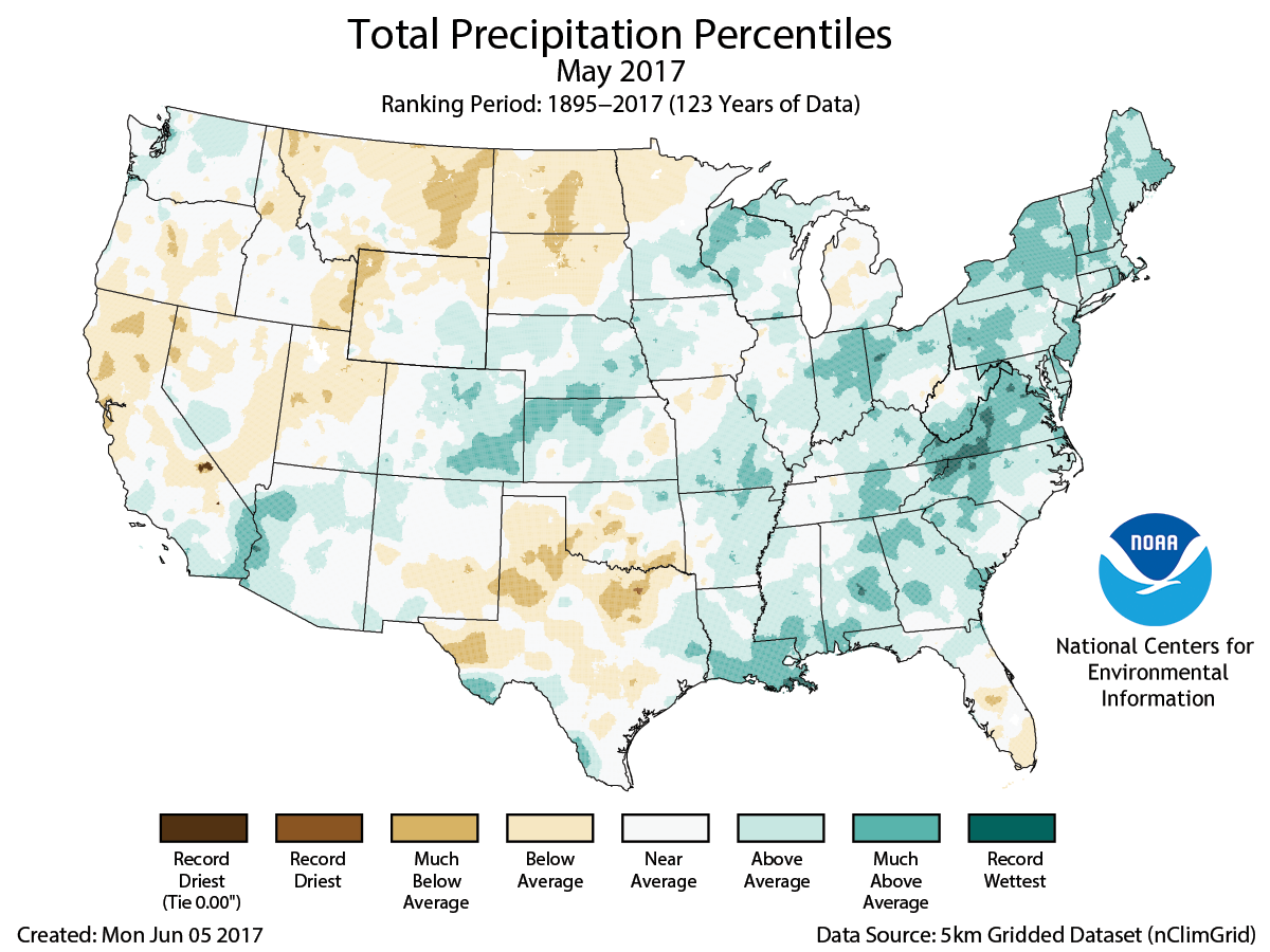 Assessing The US Climate In May National Centers For - Precipitation map of us