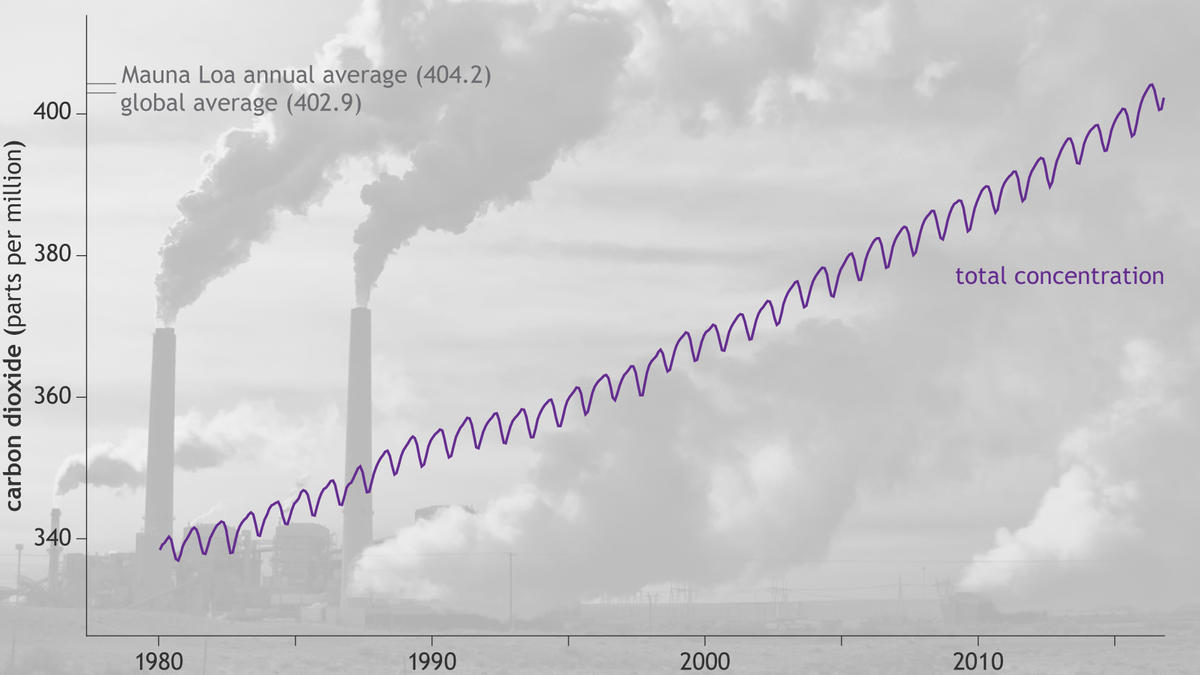 Graph of global carbon dioxide concentration levels