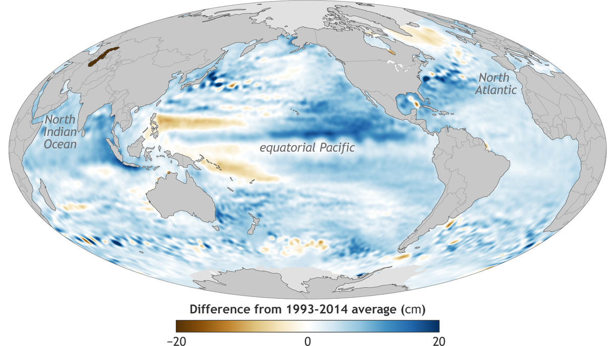 Map of global sea level in 2016