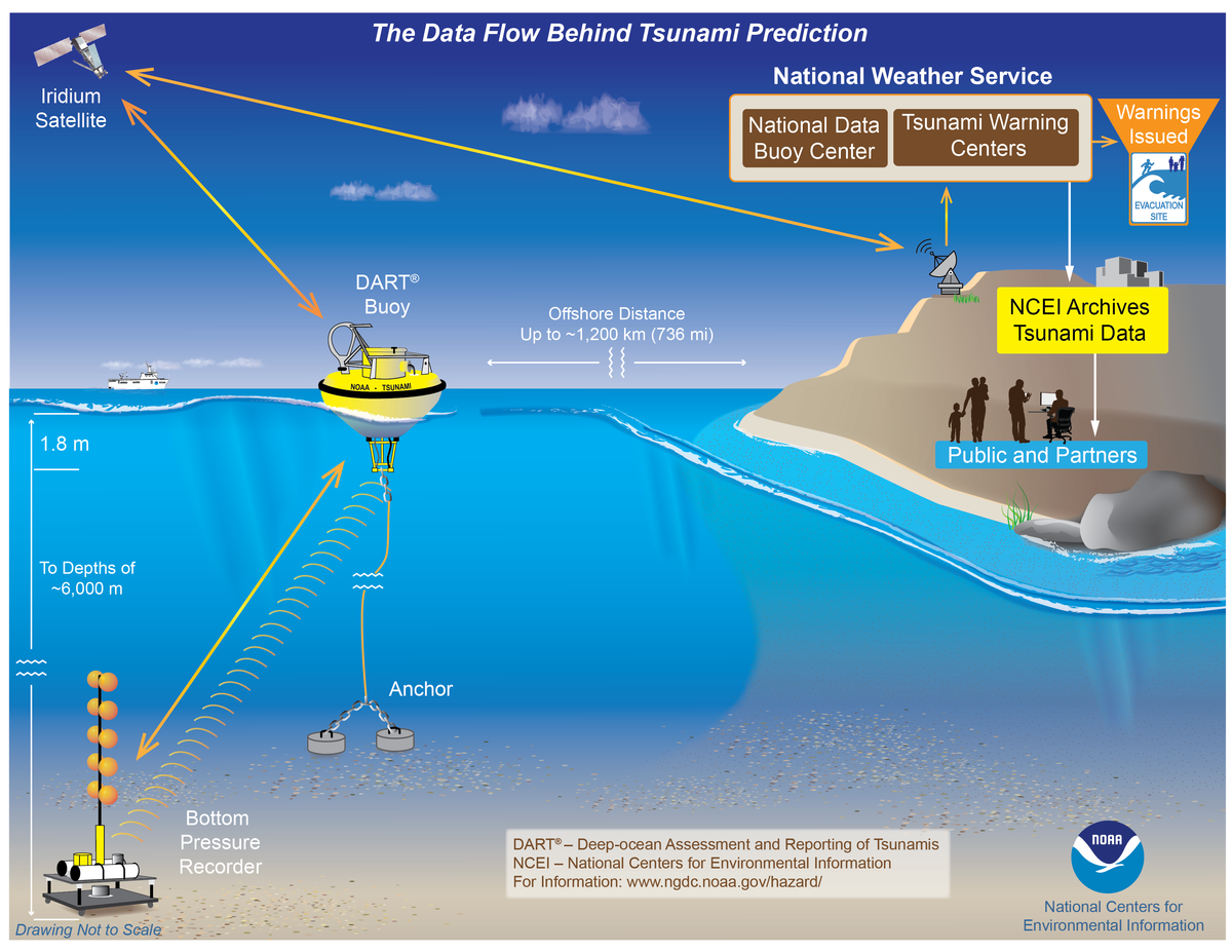 Image of DART buoy data flow for tsunami preparedness NCEI